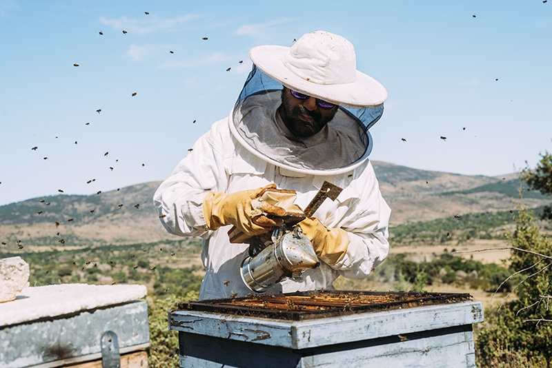 Beekeeper Honey